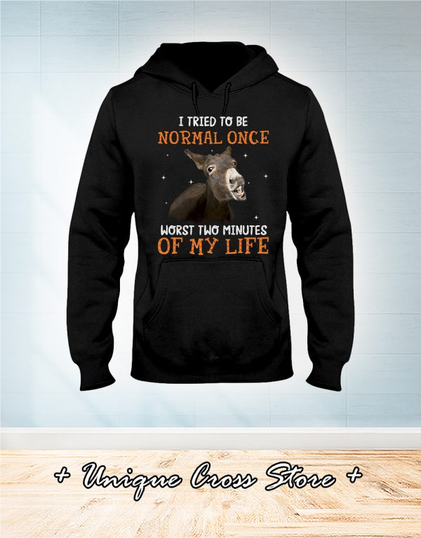 Donkey I Tried To Be Normal Once Worst Two Minutes Of My Life hoodie