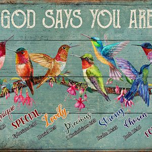 Hummingbirds God Says You Are Poster