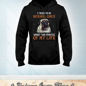 Pug Dog I Tried To Be Normal Once Worst Two Minutes Of My Life hoodie
