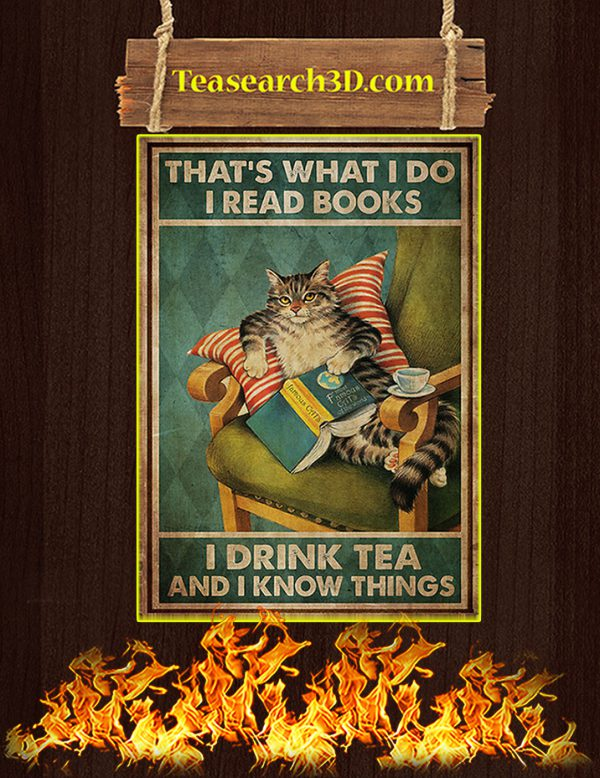 That's what I do I read books I drink tea and I know things Cat poster A2